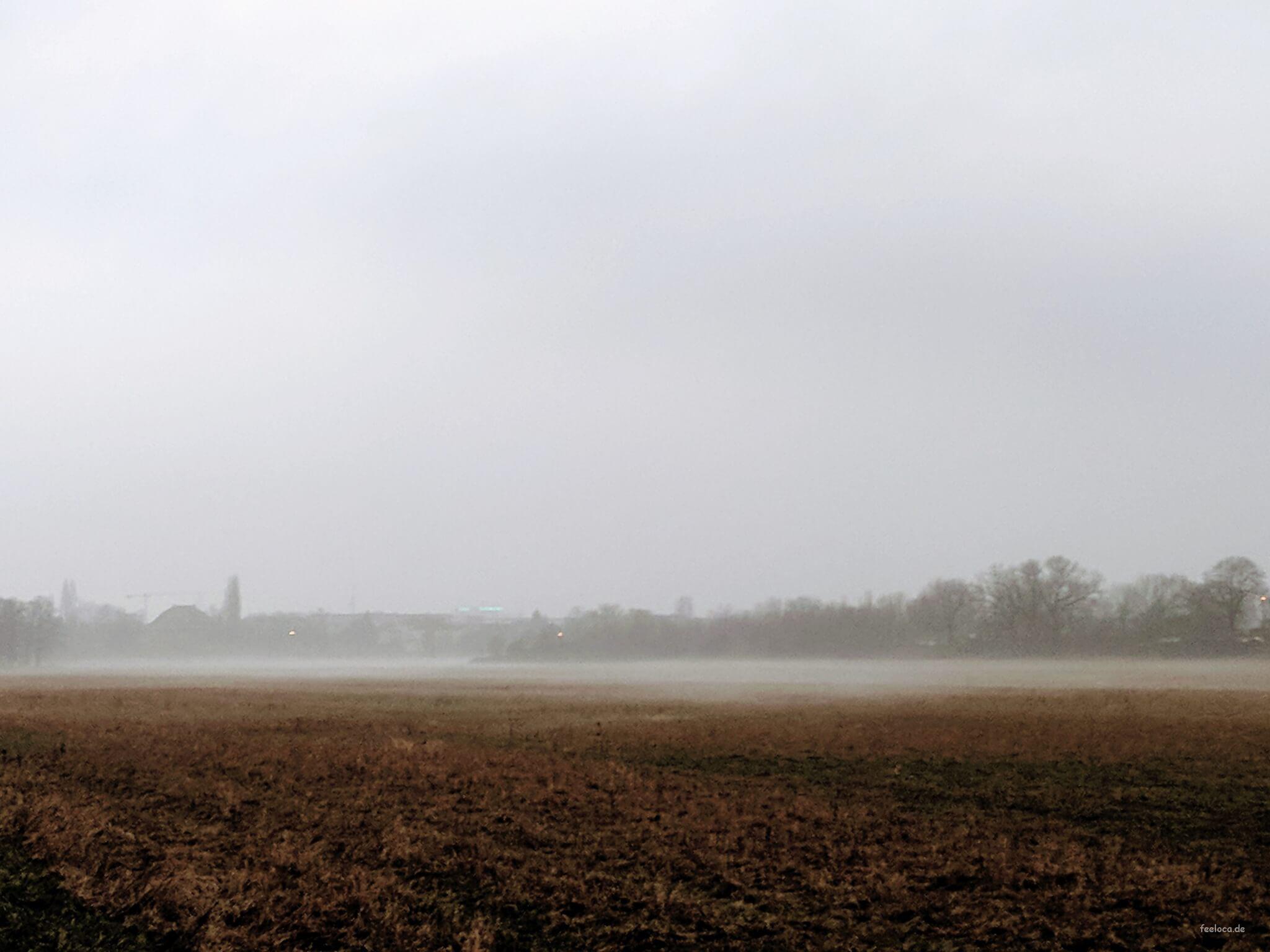 Nebel statt Schnee