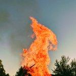 Feuer Phönix