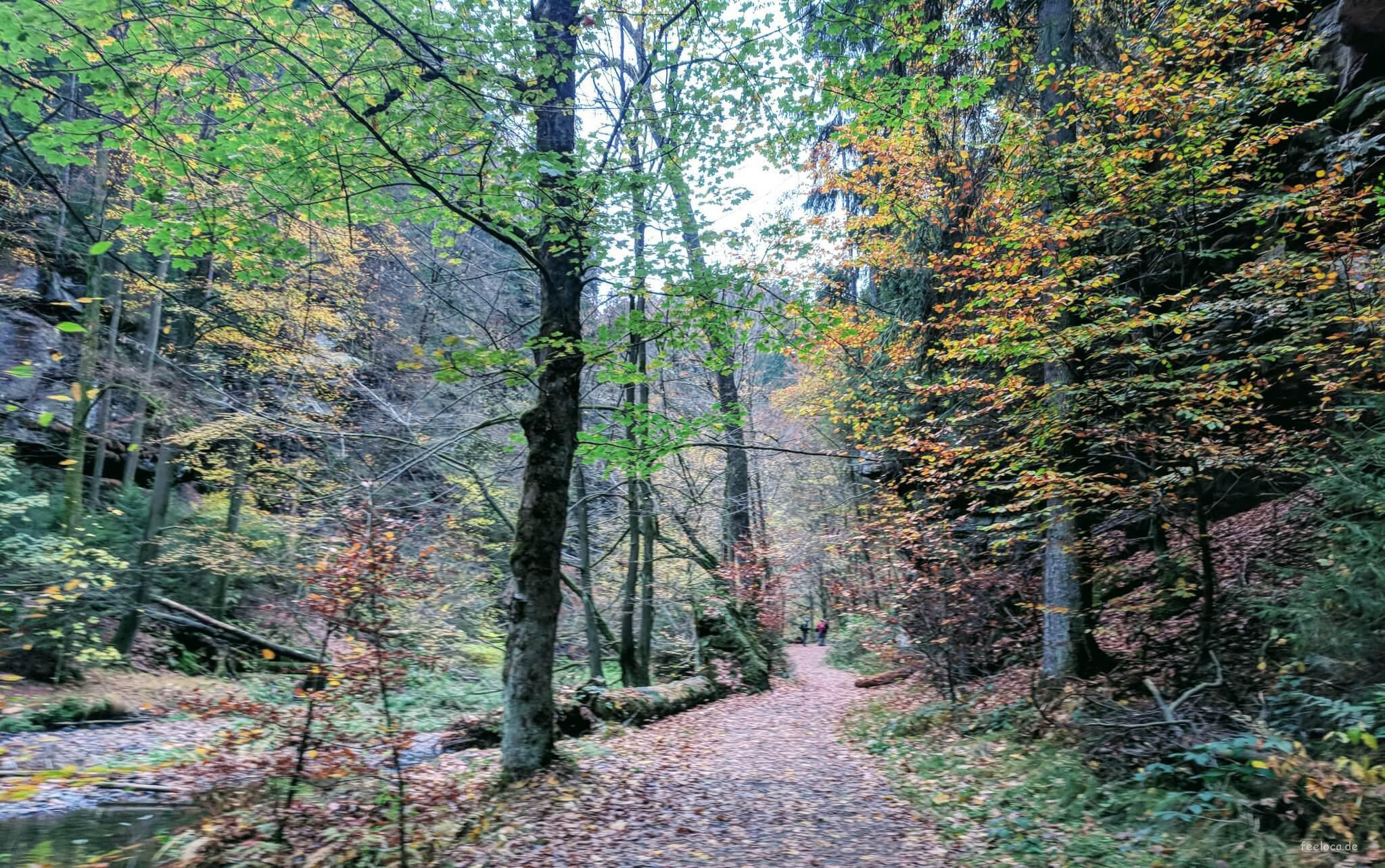 Wandern Sächsische Schweiz