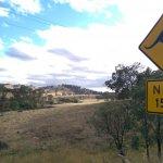 Next 15 km Kangaroos