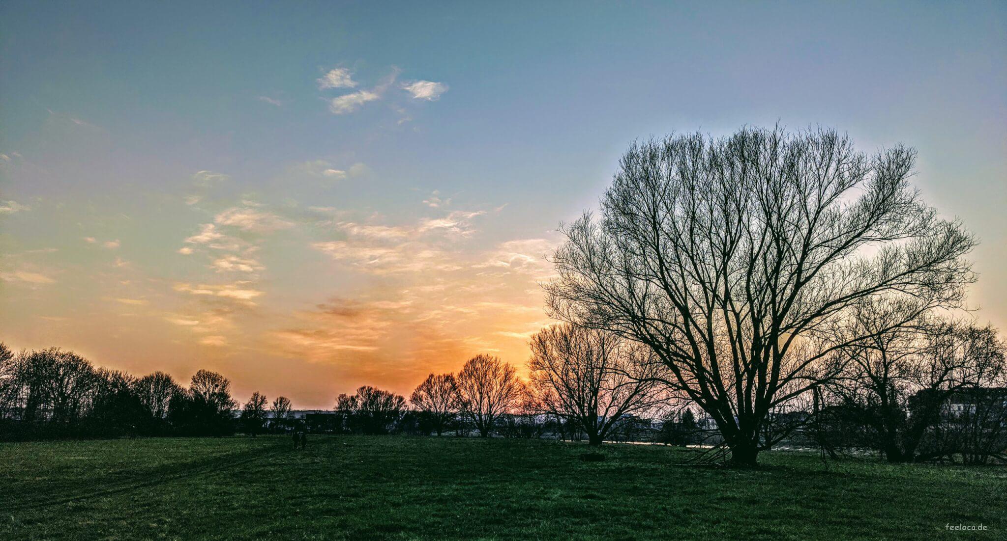 Sunset im Ostragehege