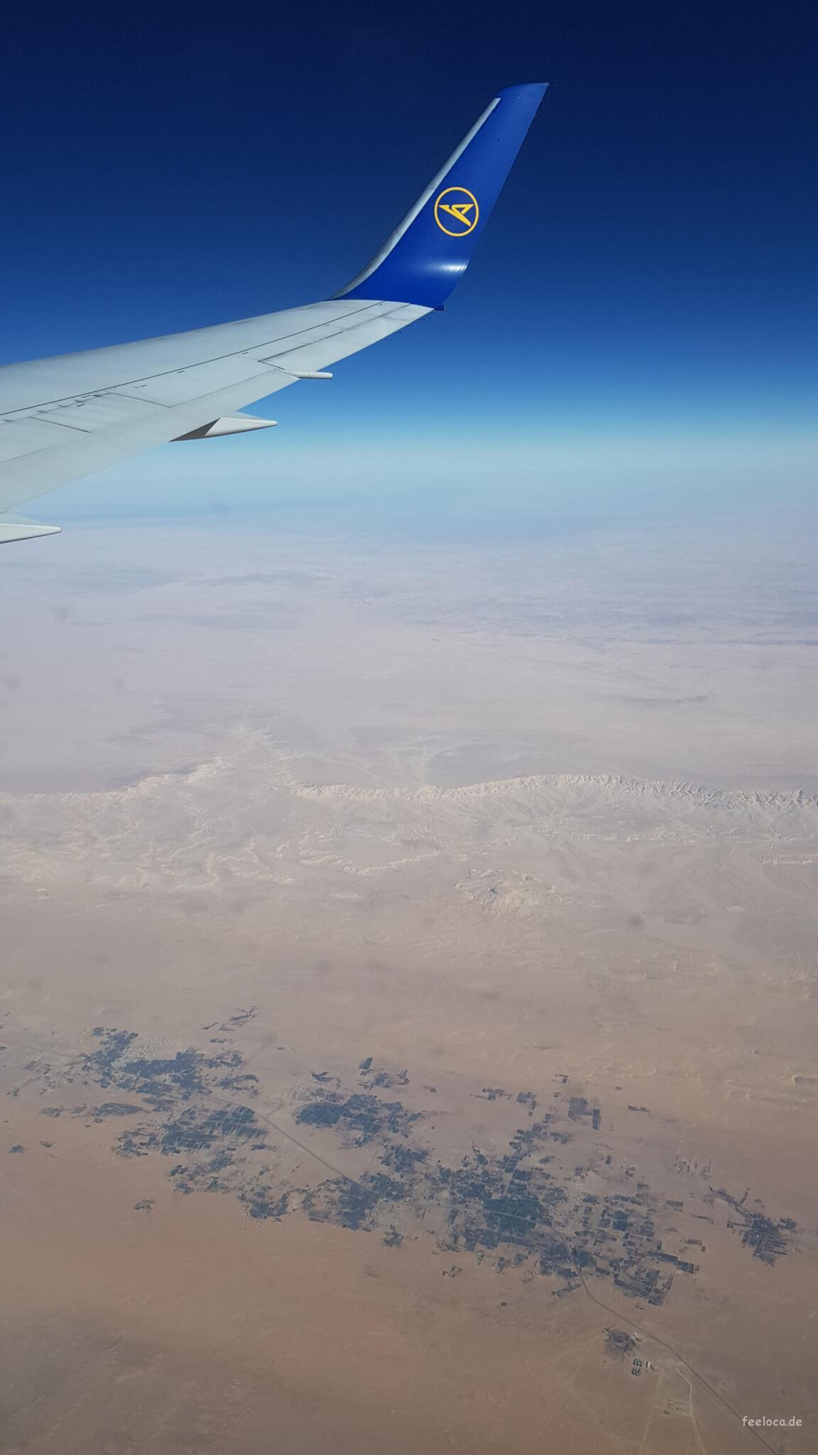 Condor über der Sahara