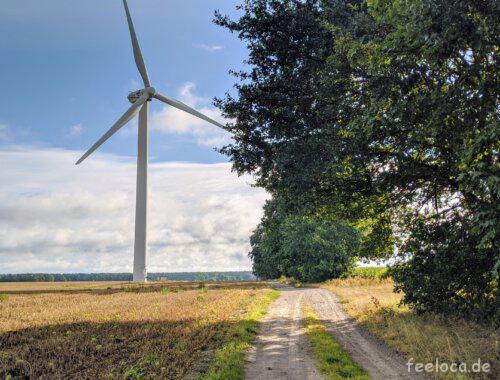 Züssow Windmühlen-Feld