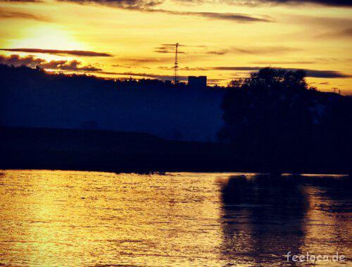 Goldene Stunde an der Elbe